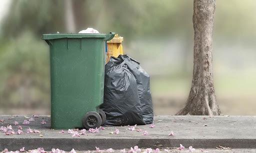 garbage pasted image 0